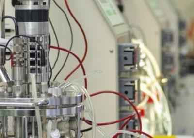 Bioreactor (2L)