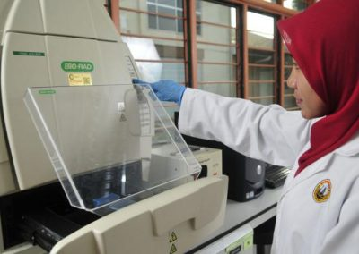 DNA Extraction & Ekctrophorcsis